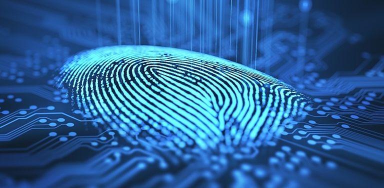 Digitalisierter Fingerabdruck; Symbolbild: Colourbox